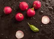Świeża rzodkiew z basilu liściem Obrazy Royalty Free