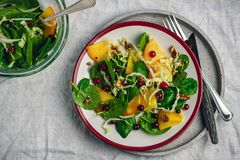 Świeża sałatka, weganinu jedzenie obraz royalty free