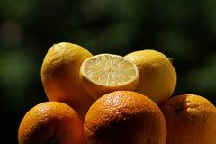 Świeża smakowita pomarańcze i cytryna w lecie fotografia royalty free