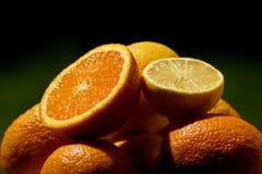 Świeża smakowita pomarańcze i cytryna w lecie obraz royalty free