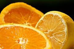 Świeża smakowita pomarańcze i cytryna w lecie zdjęcia royalty free