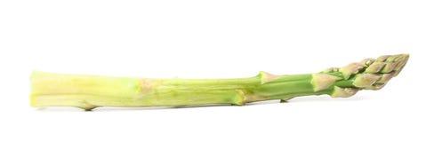 Świeża szparagowa dzida. Obrazy Royalty Free