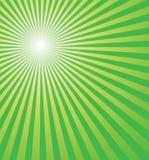 świeża tła green Obrazy Stock