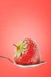 świeża truskawka Zdjęcie Stock