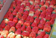 Świeża truskawka układa w papierowym pudełku przy freshmarket Zdjęcie Stock