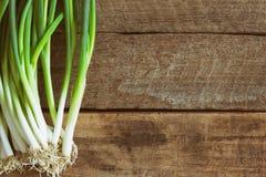 Świeża wiosny cebula na drewno stole Zamyka w górę scallions o lub wiosny Obrazy Royalty Free