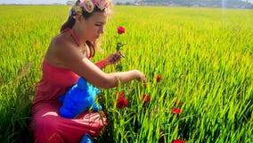 Świeża wysoka zielona trawa i młoda piękna dama przy stroną zbiory