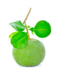 Świeża zielona pomelo owoc Obraz Royalty Free