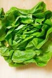 świeża zielona sałatka Fotografia Royalty Free