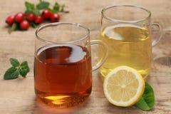 Świeża ziołowa herbata obraz royalty free