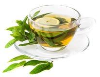 Świeża ziołowa nowa herbata Zdjęcie Stock