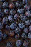 świeże śliwki gałęziaste śliwki na drewnianym tle z bliska Obraz Royalty Free