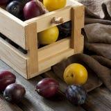 Świeże śliwki w pudełku na drewnianej desce Obrazy Royalty Free
