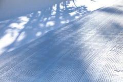 Świeże śnieżne linie, przygotowywający sztruks drymba przy Mamutową górą, Kalifornia usa Obraz Royalty Free