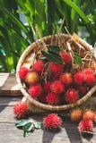 Świeże bliźniarek owoc Obraz Royalty Free