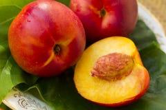 świeże brzoskwinie Zdjęcie Royalty Free