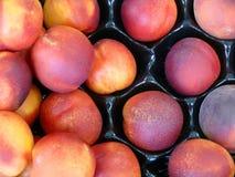 świeże brzoskwinie. Fotografia Stock