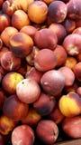 świeże brzoskwinie zdjęcia royalty free