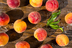 Świeże brzoskwinie, brzoskwini zamknięty up owocowy tło, brzoskwinia na drewnianych półdupkach zdjęcia stock