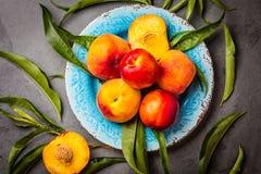 Świeże brzoskwinie na błękita talerzu, szarości łupkowy tło Odgórny widok Zdjęcia Stock