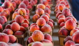 Świeże brzoskwinie przy produkt spożywczy stojakiem obraz royalty free