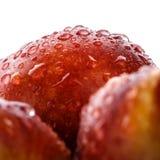 Świeże brzoskwinie z wodnymi kroplami Zamyka up, makro- foto Obrazy Stock