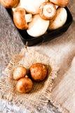 Świeże całe biel pieczarki lub agaricus, w pucharze na wieśniaku Obraz Royalty Free