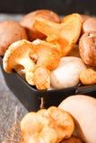 Świeże całe biel pieczarki lub agaricus, w pucharze na wieśniaku Obrazy Royalty Free
