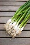 Świeże cebule Zdjęcia Stock