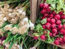 Świeże cebule i rzodkwie dla sprzedaży zdjęcia royalty free