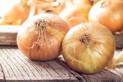 Świeże cebule na drewnianym stole Zdjęcia Royalty Free
