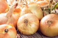 Świeże cebule na drewnianym stole Fotografia Stock