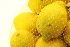 Świeże cytryny zdjęcie royalty free