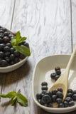 Świeże czarne jagody Obraz Royalty Free