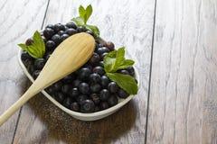 Świeże czarne jagody zdjęcie stock