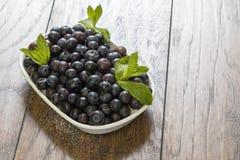 Świeże czarne jagody obraz stock