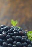 Świeże czarne jagody zdjęcie royalty free