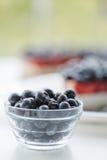 Świeże czarne jagody i czarna jagoda kulebiak Zdjęcie Royalty Free