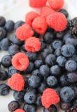 Świeże czarne jagody, malinki i czernicy na białym naczyniu, Fotografia Royalty Free