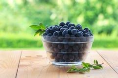 Świeże czarne jagody w pucharze na drewnianym stole w ogródzie Zdjęcia Royalty Free