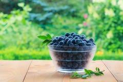 Świeże czarne jagody w pucharze na drewnianym stole w ogródzie Fotografia Stock