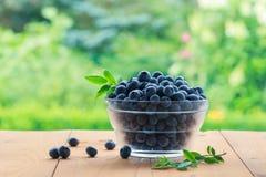 Świeże czarne jagody w pucharze na drewnianym stole w ogródzie Obraz Stock