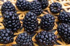 Świeże czernicy na słomy macie Fotografia Royalty Free