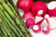 Świeże czerwone rzodkwie i piec na grillu asparagus Obraz Stock