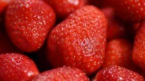 Świeże czerwone truskawki wirują zbiory