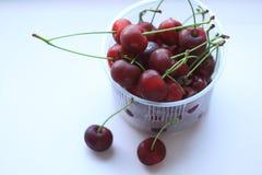 Świeże czerwone wiśnie w pucharze na menchia proszku zaświecają tło Odbitkowa przestrzeń, minimalistic styl fotografia stock