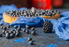 Świeże dojrzałe borówki i czarne jagody na błękitnym tle z bliska Zdjęcie Royalty Free