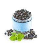 Świeże dojrzałe czarne jagody i zieleń liście na białym tle Fotografia Stock