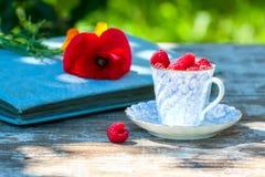 Świeże dojrzałe malinki i stara porcelany filiżanka z spodeczkiem na drewnianym stole w ogródzie Fotografia Royalty Free