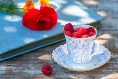 Świeże dojrzałe malinki i stara porcelany filiżanka z spodeczkiem na drewnianym stole w ogródzie Zdjęcie Royalty Free